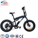 ثلج عجلة/رمز عجلة /Fat عجلة درّاجة كهربائيّة لأنّ عمليّة بيع