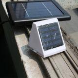 Pared de luz solar de seguridad con sensor de movimiento