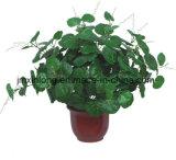 Simulação de alta planta artificial Begonia