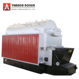 Dzl1-1.0-T caldaia a vapore infornata pallina di legno della biomassa da 1 tonnellata