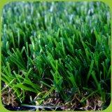 Freies Beispielweiches und populäres im Freien landschaftlich verschönerndes künstliches Gras