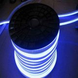 8x16mm 12V/24V/220V/110V Neon LED iluminado por el doble tira de luces.