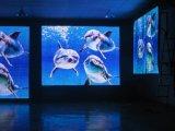 Colore completo dell'interno LED del consumo P3 di potere basso che fa pubblicità allo schermo di visualizzazione