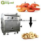 Gyc 200kg/h Non-Crisp linha de produção de chips da Apple