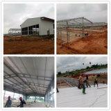 Grange préfabriquée d'entrepôt de structure métallique de grande envergure à vendre
