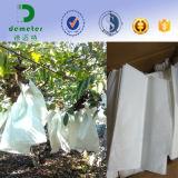 Recubierto de cera resistente al agua, alimentos ecológicos de la bolsa de papel kraft para crecer frutas