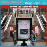 Торговый центр Mupi СИД рекламируя знак светлой коробки