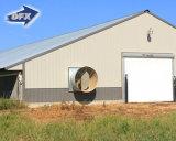 Structure métallique préfabriquée de poulets de chair de volaille en acier de conception maison de ferme