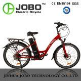 Ciudad del Motor eléctrico de bicicleta con frenos de disco hidráulico Jb-Tdf20z