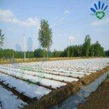 Landcover 작물 덮개를 위한 UV 저항하는 PP 비 길쌈된 직물