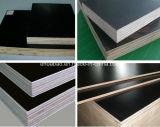 Timber di legno con Poplar Core Black Film Faced Plywood