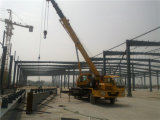 Atelier de structure métallique de modèle de coût bas de la Chine (ZY333)