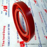 NBR FKM Tc a Vedação de Óleo Fabricante vedações mecânicas 30*55*10 Customized