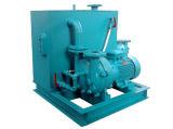 물 반지 진공 펌프 (2BE1 253)