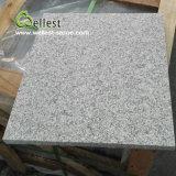 G603建築材料のための薄い灰色の炎にあてられた花こう岩の床タイル