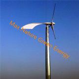 高性能10kwの風力キット(コントローラ、一緒のインバーター)