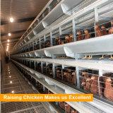 自動家禽はケージシステムを層にする