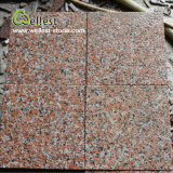 G562 Maple Red Flamed Non-Slip Granite Floor Wall Tile