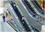 Durable et sûr des escaliers mécaniques pour le Shopping Mall