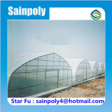 Produtos agrícolas utilizados para o efeito de estufa túnel melancia