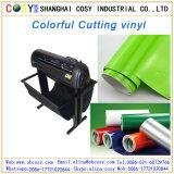 Ausschnitt-Plotter-selbstklebender Vinylaufkleber-Werbeunterlagen färben