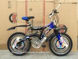 Bicicleta SR-GW14 da montanha do preço do competidor MTB