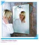 Zilveren Spiegel van de kleding de omhoog (SWM)