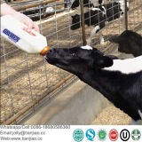 Pó de gordura PED misturada para bebé ou Animal Milk-Replacer Pet