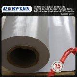 Materiale largo della bandiera di formato del Eco-Solvente per stampa di Digitahi