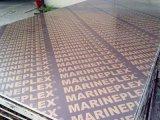 Contre-plaqué Shuttering fait face de contre-plaqué de film estampé avec Logoes