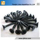 En acier au carbone noir18182 DIN Phosphate vis à mur sec à filetage fin