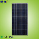 공장 직접 판매 300W 단청 많은 유형 태양 전지판
