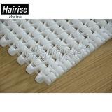 Hairise cinta transportadora de plástico de color blanco para la Línea de Producción Vegetal