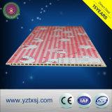 Hölzerne zusammengesetzte Plastikwand des Hersteller-Export-WPC