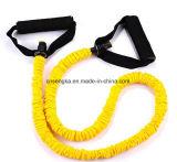 مقاومة نطاق قوة إمتداد حزام سير نظام يوغا [جم] تدريب لياقة تمرين بدنيّ