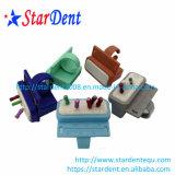 Валики зубоврачебной Endo коробки архивов зубоврачебные Endo