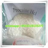 HCL pharmaceutique CAS 51-05-8 de /Procaine de chlorhydrate de procaïne de la pente 99