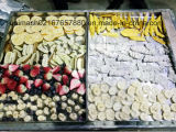 Secador de gelo do alimento da alta qualidade