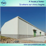 Structure métallique Bulidngs préfabriqué pour des zones industrielles