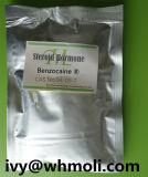 Benzocaine esteróide cru farmacêutico Bodybuilding 94-09-7 do pó da fonte