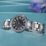 여성 시계 ODM 최신 판매 가죽 시계 (Wy-018A)