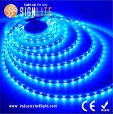 Striscia flessibile della fabbrica SMD5050 60LEDs/M LED