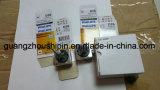 Xenon beleuchtet Installationssätze VERSTECKTE Xenon-Licht VERSTECKTE Lampe D3s 6000K für Philips