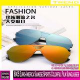 8905 Euro-America Desportos Siamês película colorida óculos de sol