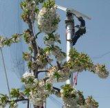 Ventilateur Orchard utilisés sur les fermes (FSJ-85)