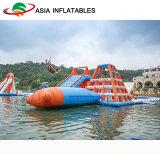 호수 물 물 공원 Inflatables 의 바닷가를 위한 팽창식 상업적인 물 공원