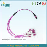 Câbles équipés de connexion de fibre de MTP/MPO pour la solution Multi-Fiber avec une densité gauche plus élevée