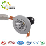 Suprindo Patended Peonylighting 30W LED luzes para baixo com chips LED de boa qualidade e condutor