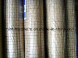 Acoplamiento de alambre soldado galvanizado sumergido caliente con alta calidad