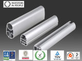 De Profielen van de Legering van het aluminium/van het Aluminium voor Venster en Gordijngevel (ral-593)
